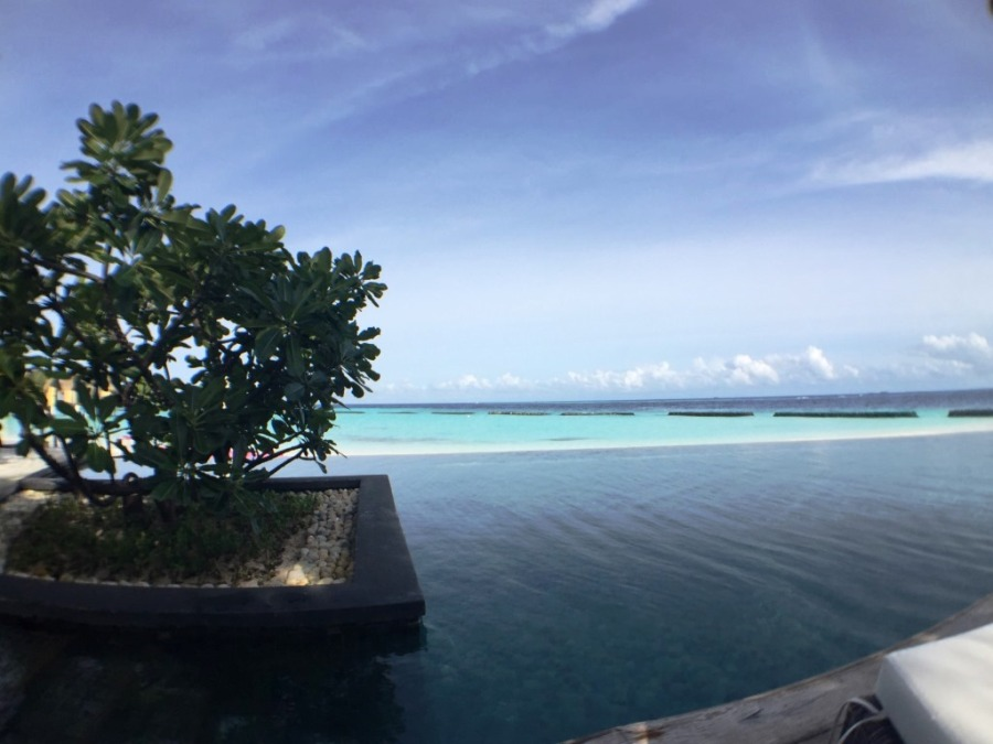 Maldivler'de havuz da böyle oluyormuş...