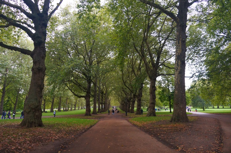 Green Park'taki heybetli ağaçlar arasında yürümek insanı çok rahatlatıyor.